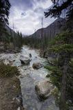 大理石峡谷,库特尼国家公园 免版税库存图片