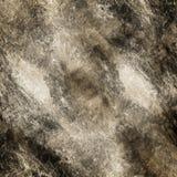 大理石模式 库存图片