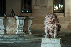 大理石狮子雕象和大理石水井 免版税库存图片
