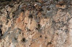 大理石猎物 免版税图库摄影