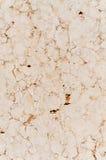 大理石石地板纹理 图库摄影
