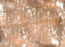 大理石纹理被说明的设计 免版税库存图片