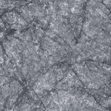大理石纹理 库存例证