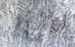 大理石自然纹理 使有大理石花纹的表面 花岗岩青苔室外模式照片smal跟踪 非常背景详细实际石头 免版税库存照片