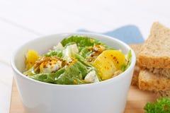 大白菜沙拉用多士面包 库存照片