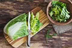大白菜沙拉 库存图片