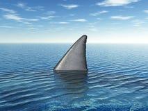 大白鲨鱼飞翅 免版税库存图片
