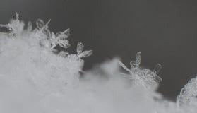 大的雪花弄湿了 库存照片
