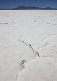 大盐湖沙漠。犹他,美国 免版税图库摄影
