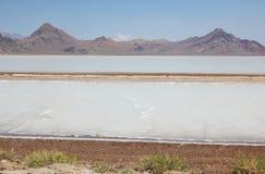大盐湖沙漠。犹他,美国 免版税库存照片