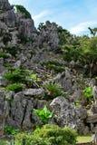 大石灰石岩层在Daisekirinzan在冲绳岛停放 库存图片