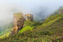 大石头和山和雾在土井inthanon在Chiangmai省,泰国 库存图片