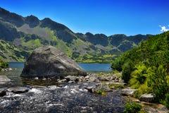 大石头在Tatra山的一个湖 免版税图库摄影