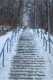 大积雪的楼梯 免版税库存图片