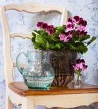 大竺葵和一个水罐水 库存照片