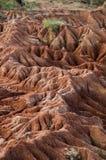 大红砂岩岩层在热的干燥沙漠 库存图片