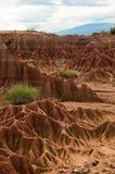 大红砂岩岩层在热的干燥沙漠 库存照片