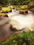 大红色冰砾在山河中泡沫似的水森林光的弄脏了与反射的水 免版税库存图片