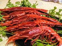 大红色大虾 库存图片