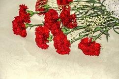 大红色康乃馨花束与白色的烘干了在胶合板的小花 免版税库存图片