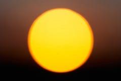 大红色星形太阳 库存图片