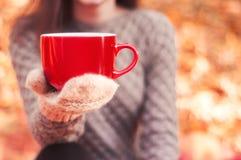 大红色杯子在一副被编织的手套的妇女的手上 免版税图库摄影