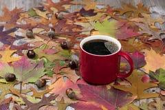 大红色杯子热的黑暗的咖啡和在土气的秋叶求爱 免版税库存图片
