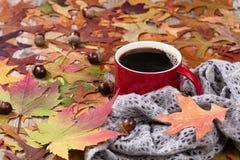 大红色杯子热的黑暗的咖啡和温暖的围巾有秋天leav的 免版税图库摄影