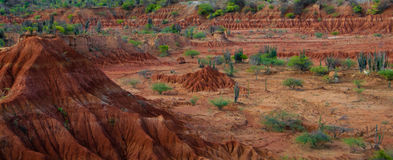 大红色沙子石头小山在干燥热的tatacoa沙漠 库存图片