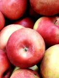 大红色苹果在中心 库存图片