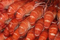 大红色虾待售 库存照片