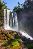 大美丽的瀑布 免版税图库摄影