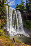 大美丽的瀑布 免版税库存照片