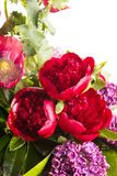 大美丽的豪华的花束明亮的多彩多姿的鸦片、牡丹和丁香在一个透明花瓶在白色 免版税库存图片