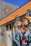 大胆和五颜六色的街道艺术,罗切斯特,纽约的醒目的图象, 2017年 免版税库存照片
