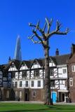 大胆的伦敦塔结构树 免版税库存照片