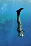 大英尺freediving的场面培训 库存图片