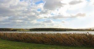 大草、池塘和多云天空 捷克横向 库存图片