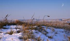 大草原冬天 库存照片