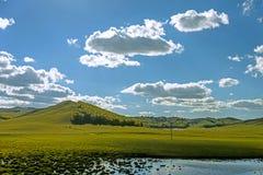 大草原和云彩 图库摄影