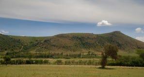 大草原在肯尼亚非洲 图库摄影