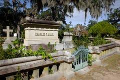 大草原的乔治亚美国历史的博纳旺蒂尔公墓 免版税库存照片