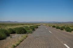 大草原风景,自由州,南非 免版税图库摄影
