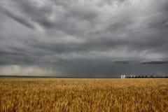 大草原风暴 库存图片