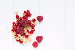 大莓和小无核小葡萄干 免版税库存照片