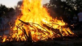 大营火背景从分支烧伤的在森林慢动作的晚上 影视素材