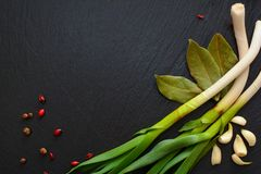 大蒜、月桂叶、伏牛花葱和莓果在黑sla 免版税图库摄影