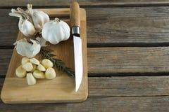 大蒜、迷迭香和刀子在砧板 库存图片