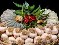 大蒜和其他典型的秋天菜在篮子 免版税库存照片