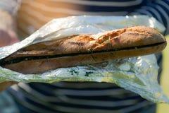 大蒜和新鲜的草本橄榄油长方形宝石在铝芯 库存照片